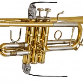 ECOUVILLON BG A31 T2 - Chemise de pistons de trompette