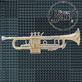 Trompette BACH Stradivarius 180-43