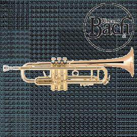 Trompette BACH LT180-43G Vernie