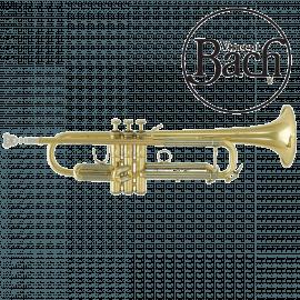 Trompette BACH VBS1 Vernie