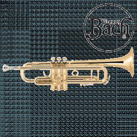 Trompette BACH Stradivarius LT180-72