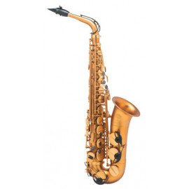 Saxophone Occasion