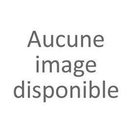 PRECIS POUR L' ETUDE DES GAMMES - Hautbois